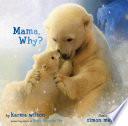 Mama  Why