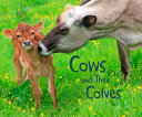 Cows and Their Calves PDF