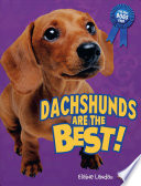Dachshunds Are the Best
