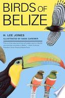 Birds of Belize