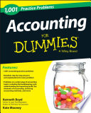 1 001 Accounting Practice Problems For Dummies