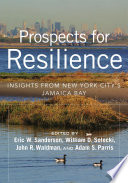 Prospects for Resilience Pdf/ePub eBook