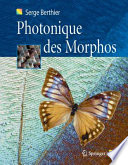 illustration Photonique des Morphos