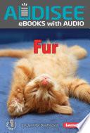 Ebook Meltdown! Epub Fred Bortz Apps Read Mobile