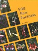1001 Pelargoniums