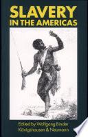 Slavery in the Americas Studien zur ''Neuen Welt'' Bd. 4 € 55,00 / Sfr 96,20