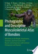 Photographic and Descriptive Musculoskeletal Atlas of Bonobos