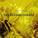 Im Bernsteinwald