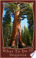 What To Do In Sequoia And Kings Canyon