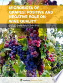 Microbiota of Grapes  Positive and Negative Role on Wine Quality