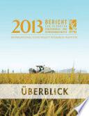 2013 Bericht zur globalen Ernährungs- und Entwicklungspolitik: Überblick