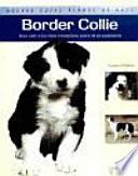 Border Collie  Nuevas gu  as perros de raza