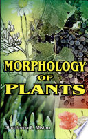 Morphology of Plants Of The World Rainforest Distribution