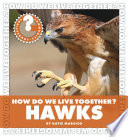 How Do We Live Together? Hawks To The Bustling World Around