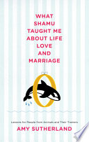 What Shamu Taught Me About Life  Love  and Marriage