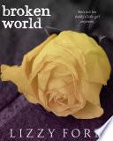Broken World 2 Broken Beauty Novellas