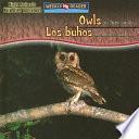 Owls Are Night Animals   Los b  hos son animales nocturnos