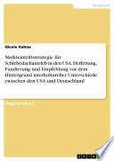 Markteintrittsstrategie für Schiebedachantrieb in den USA. Herleitung, Fundierung und Empfehlung vor dem Hintergrund interkultureller Unterschiede zwischen den USA und Deutschland