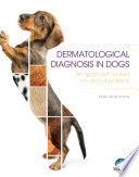 Dermatological Diagnosis In Dogs An Approach Based On Clinical Patterns