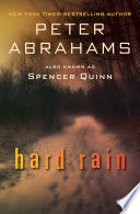 Hard Rain Into Secrets Of The 1960s And 70s