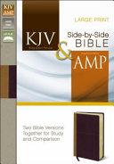Side By Side Bible PR KJV Am Large Print