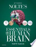 Nolte S Essentials Of The Human Brain E Book