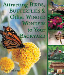 Attracting Birds  Butterflies   Other Winged Wonders to Your Backyard