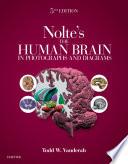 Nolte S The Human Brain In Photographs And Diagrams E Book