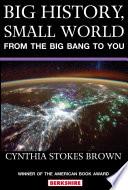 Big History Small World