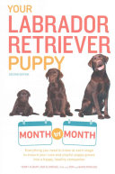 Your Labrador Retriever Puppy Month By Month : everything you need to know and...