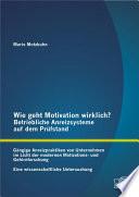 Wie geht Motivation wirklich? – Betriebliche Anreizsysteme auf dem Prüfstand: Gängige Anreizpraktiken von Unternehmen im Licht der modernen Motivations- und Gehirnforschung – Eine wissenschaftliche Untersuchung