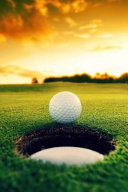 Almost There   Golf Ball by the Hole Journal