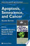 Apoptosis  Senescence and Cancer