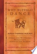 Why Buffalo Dance