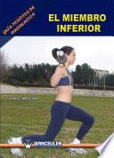Guía práctica de musculación: el miembro inferior