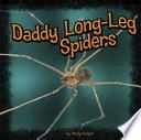 Daddy Long Leg Spiders