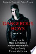 Dangerous Boys  Volume 1