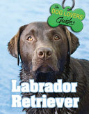 Labrador Retriever : world. strong, active, and loyal, labs love being...