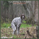 Pooping Pooches 2021 Wall Calendar