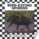Bird Eating Spiders