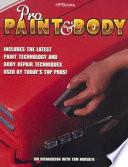 Pro Paint   Body
