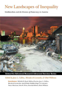 New Landscapes of Inequality
