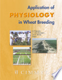 Application of Physiology in Wheat Breeding
