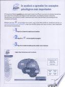 Introducci N A La Psicolog A