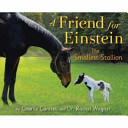 A Friend for Einstein  the Smallest Stallion