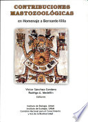 Contribuciones Mastozool Gicas En Homenaje A Bernardo Villa