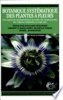 Botanique syst  matique des plantes    fleurs