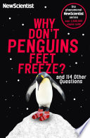 Why Don T Penguins Feet Freeze