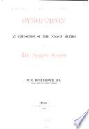 Bible 4a NT c Gospels a Greek 1880