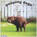 Pooping Dogs 2021 Wall Calendar